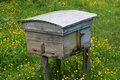 Free Rural Wooden Bee Hive Stock Photos - 5660653