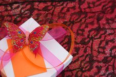 Free Butterfly Gift Stock Photos - 5660193