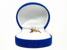 Free Ring In A Blue Box Royalty Free Stock Photography - 5660507