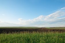 Free Field Under Blue Sky Royalty Free Stock Images - 5660669