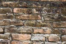 Free Brick Background. Royalty Free Stock Images - 5662919
