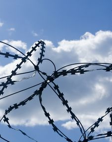 Free Barbed Wire Stock Image - 5664381