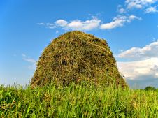 Free Stacked Hay Stock Photography - 5665452