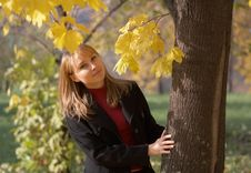 Free Young Woman On A Autumn Leaves Background Stock Photography - 5667772