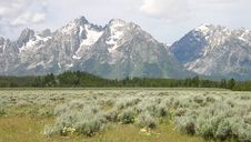Teton Mountains Royalty Free Stock Photos