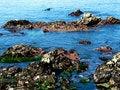 Free Rocks At Ocean Beach Stock Image - 5671141