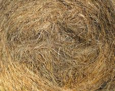 Ball Of Hay Stock Photo