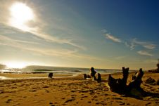 Free Beach Royalty Free Stock Photography - 5670317