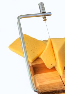 Free Cheese Stock Photography - 5671272