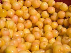 Free Yellow Cherries Stock Photo - 5671850