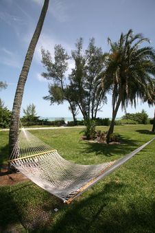 Free Hammock Ocean View Royalty Free Stock Photo - 5672905