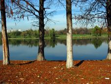 Free Red Ground Next To Calm Water Royalty Free Stock Image - 5673266