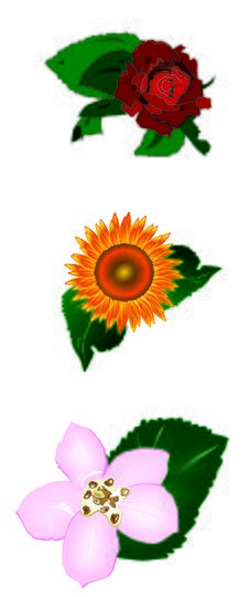 Free Flowers 3D Stock Photos - 5673353