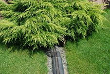 Railroad To Forest Royalty Free Stock Photos