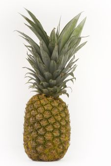Free Pineapple Royalty Free Stock Photos - 5674838
