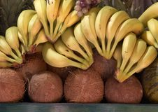 Free Banana And Coconut. Royalty Free Stock Images - 5675339