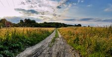 Free Field Road In Time Sunset Royalty Free Stock Images - 5675349