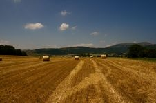 Hay Bales, Umbria Stock Image