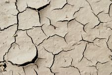 Free Arid Mud Royalty Free Stock Photo - 5676605