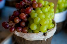 Juicy Clusters Of Red And Green Grapes Stock Photos