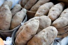 Free Large Potatoes Displayed At A Market Royalty Free Stock Photography - 5677917