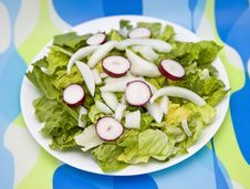 Free Salad On Contemporary Setting Royalty Free Stock Photo - 5679015