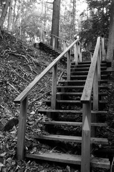 Free Stairs Royalty Free Stock Images - 5679639
