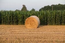 Free Hay Bale Royalty Free Stock Photos - 5679798