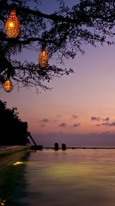 Lantern Lit Swim Stock Images