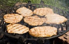 Free Barbecue Stock Images - 5682164