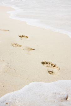 Free Footprint Stock Photo - 5683700