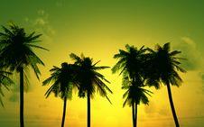 Free Beautiful Sunset Stock Photo - 5684100