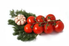 Garlic, Fennel And Tomatoes Branch Royalty Free Stock Images