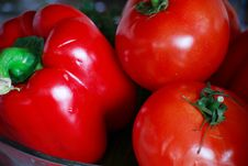 Free Tomato Royalty Free Stock Photo - 5684705