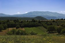 Free Landscape Stock Photo - 5686100