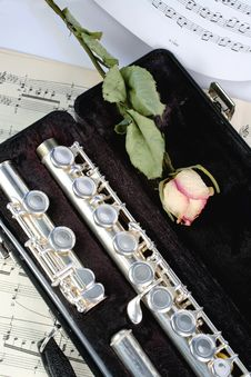 Free Silver Flute Between Dots Royalty Free Stock Images - 5686469