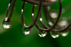 Free Raindrops Royalty Free Stock Image - 5688706