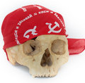 Free Skull And Bandanna Royalty Free Stock Photos - 5698808