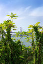 Free Suspension Bridge In The City Of Lisbon. Royalty Free Stock Photos - 5699588