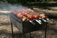 Free Delicious Kebab On BBQ Stock Photo - 5692970