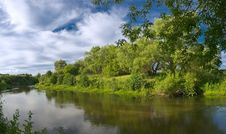 Free River And Trees Royalty Free Stock Photo - 5693135