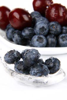 Free Bilberries Stock Image - 5695961