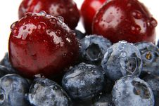 Free Bilberries Royalty Free Stock Photos - 5696078