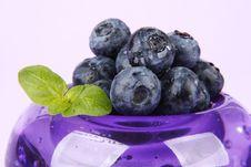Free Bilberries Royalty Free Stock Image - 5696606