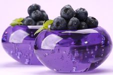Free Bilberries Royalty Free Stock Images - 5696679