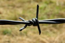Free Barbed Wire Stock Photography - 5696762