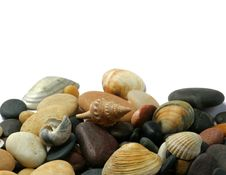 Free Seashells  And Stones Royalty Free Stock Photography - 5696777