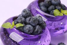 Free Bilberries Stock Photography - 5696782