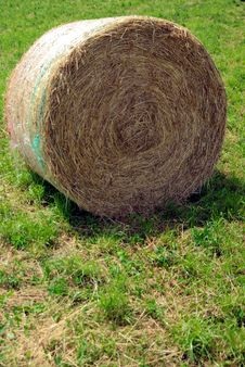 Free Rolled Hay 2 Royalty Free Stock Image - 5696976