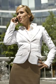 Free Blonde Businesswoman Stock Photos - 5697213